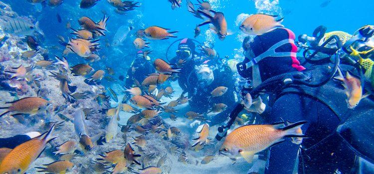 costa-teguise-aquarium